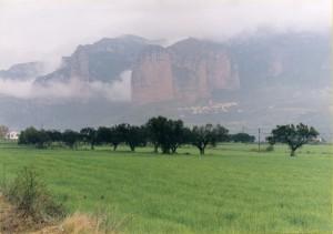 Mallos entre la niebla