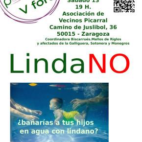 Sábado 13 de Diciembre 19 horas – Lindano en Zaragoza – Circulo de Podemos