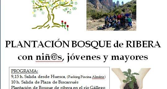 Plantación de árboles con la Asociación Gabardiella y Ecologistas en Acción ¡ACTUALIZADA!