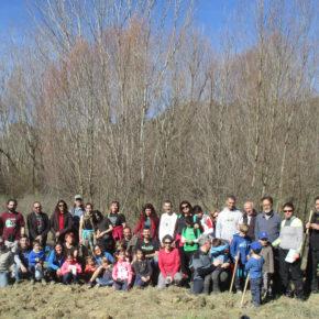 Éxito de la plantación de salceras de Asoc. gabardiella y ecologistas en acción
