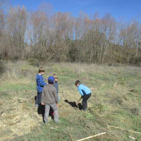 Plantación de árboles el sábado 24 de febrero con la Asociación Gabardiella y Ecologistas en Acción.