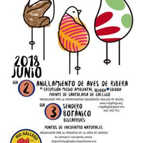 Actividades culturales en Biscarrués y la Galliguera