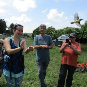 Éxito del sábado de anillamiento de aves en la Galliguera en la celebración del Dia Mundial del Medio ambiente