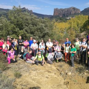 Éxito de la 10ª ruta del madroño celebrada en la Galliguera.