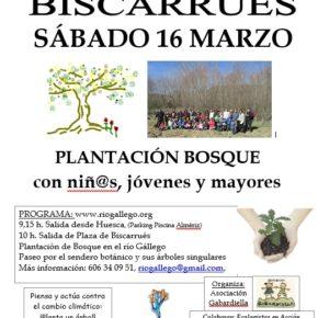 Sábado 16 de marzo-Plantación de árboles con la Asociación Gabardiella y Ecologistas en Acción.