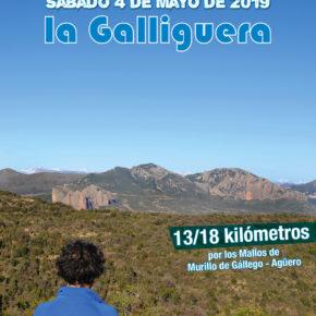 INSCRIPCIÓN PRORROGADA - XI Marcha por La Galliguera, el sábado 4 de mayo. 13 ó 18 km por los Mallos de Murillo y Agüero.