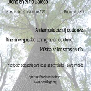 Jornadas medioambientales 'Otoño en el río Gállego'